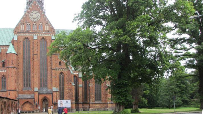 Freitag: Besuch des alten Zisterzienser-Klosters in Bad Doberan.