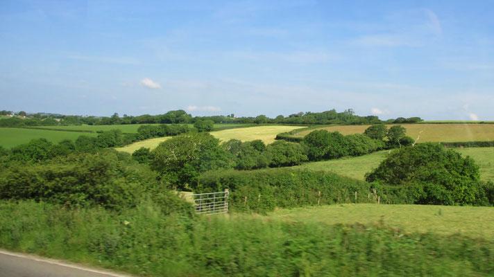 Montag: Die Straße nach Land's End führt durch eine erfrischend grüne Landschaft.