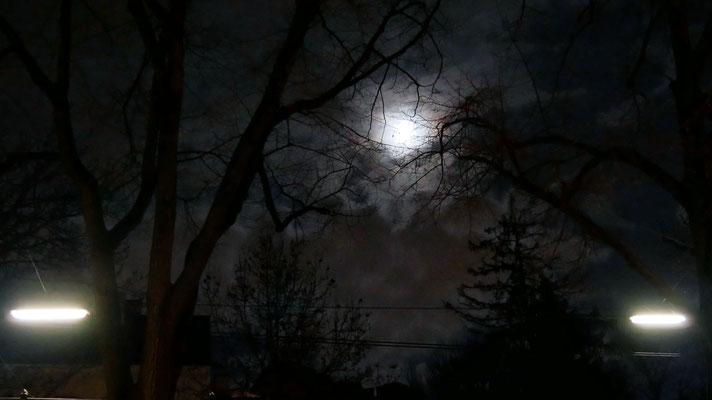 Vierter Adventsamstag, eine klare Nacht