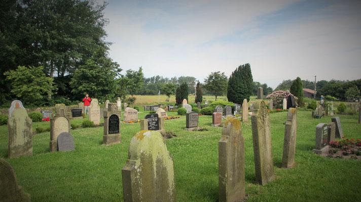 """Mittwoch: Auf der Insel Föhr gibt es einen Friedhof mit """"sprechenden Grabsteinen""""."""