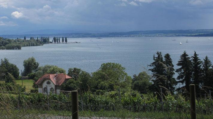 Samstag: Blick auf den Bodensee von der Wallfahrtskirche in Birnau.