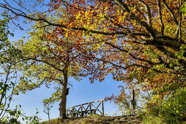 Fürstlicher Park Inzigkofen 2019