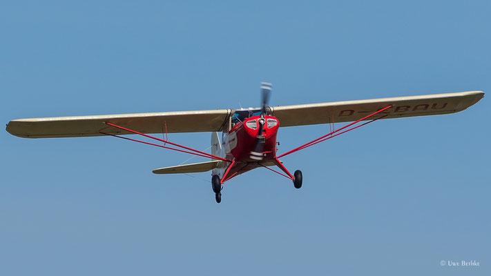 Taylorcraft F19 Sportsman (D-EBAU)