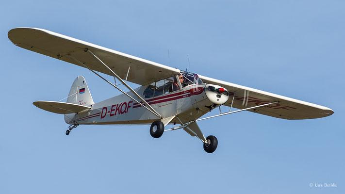 Piper PA-18 Supercub (D-EKQF)