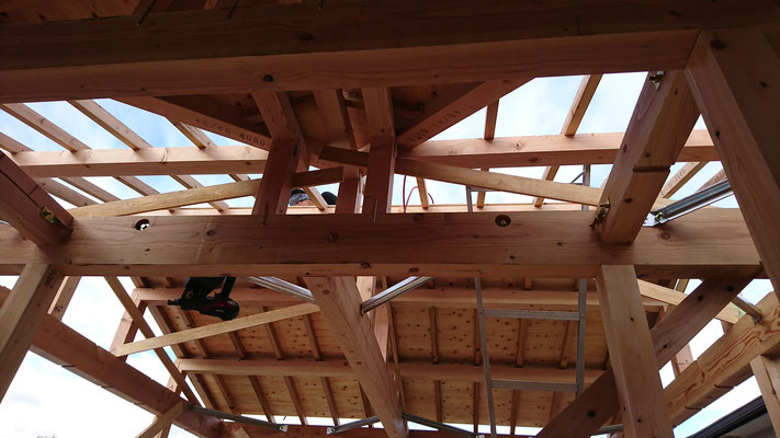 公募型木のまちづくり事業_新築柱建て施工中