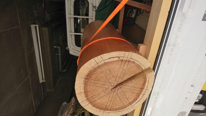 北山の杉の巨大丸太|タクミ建設株式会社