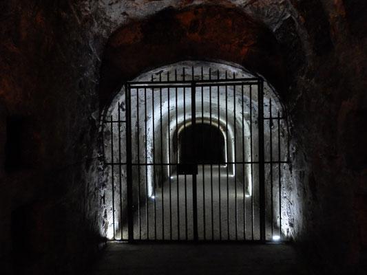 この鉄格子の奥には過去のグランヴィンテージが全て保管されている(非販売)。