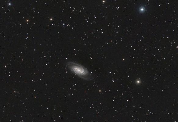 NGC 2903, C14 hyperstar sur EQ8, CCD QHY8L, 18x5min, 8 et 12 avril 2015, Lionel
