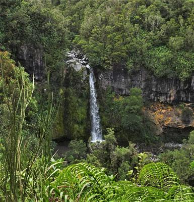 Der 18m hohe Dawson Wasserfall.