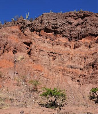 Eine farbige Berglandschaft......