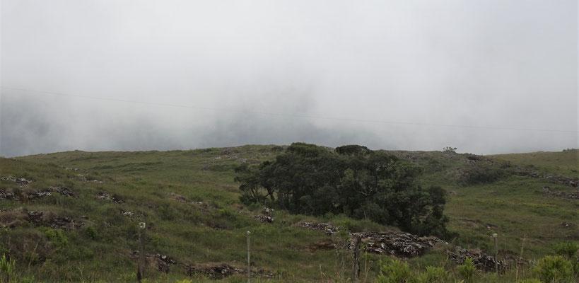 Dichter Nebel verhinderte den Ausblick.