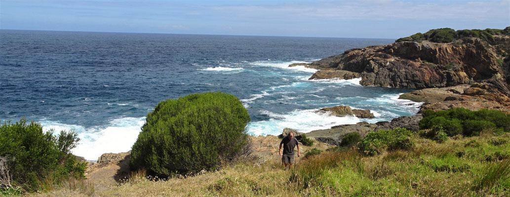 Die Felsenküste.....