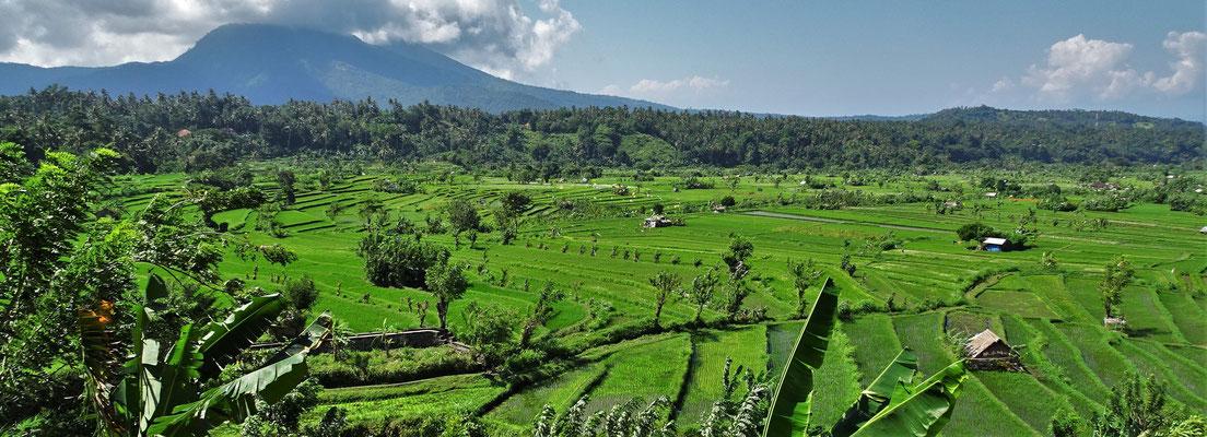 Die Landschaft in Ostbali....