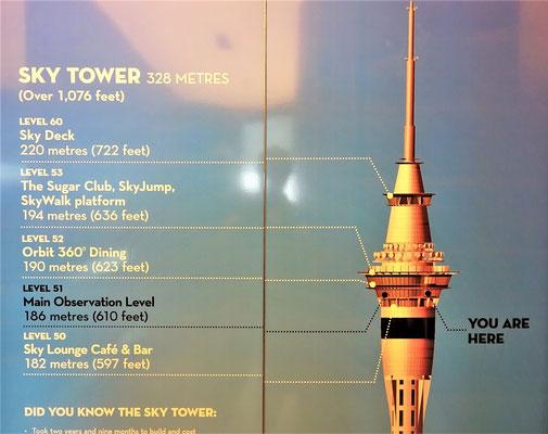 Der Sky Tower von Auckland......