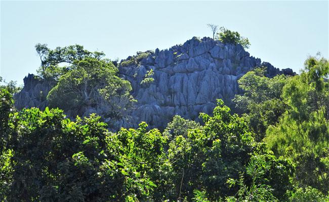 ....unter diesem Felsen 1883 entdeckt wurde.