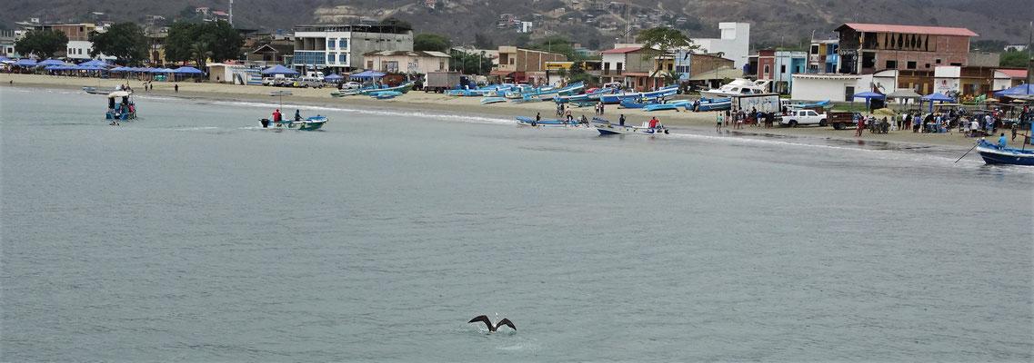 Der Strand von Puerto Lopez.....