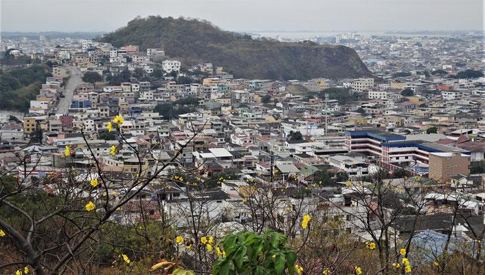 Der Blick auf die Stadt vom......