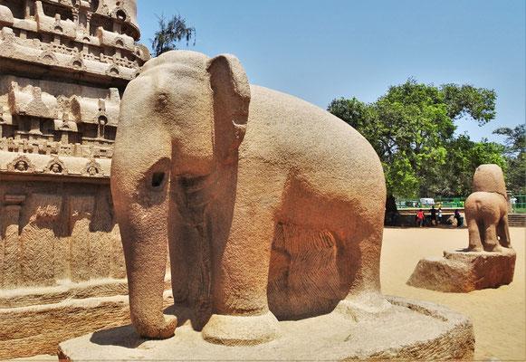 Gut erhaltener Elefant