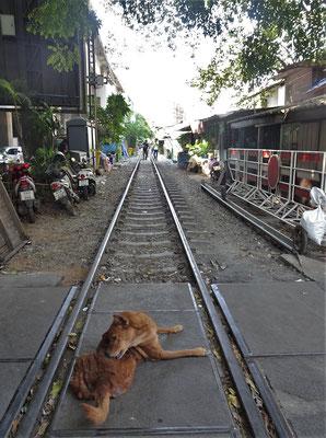 Hier fährt anscheinend noch ein Zug, sonst wäre alles verstellt.