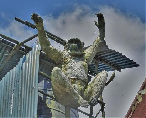 ....und der Affe auf dem Dach