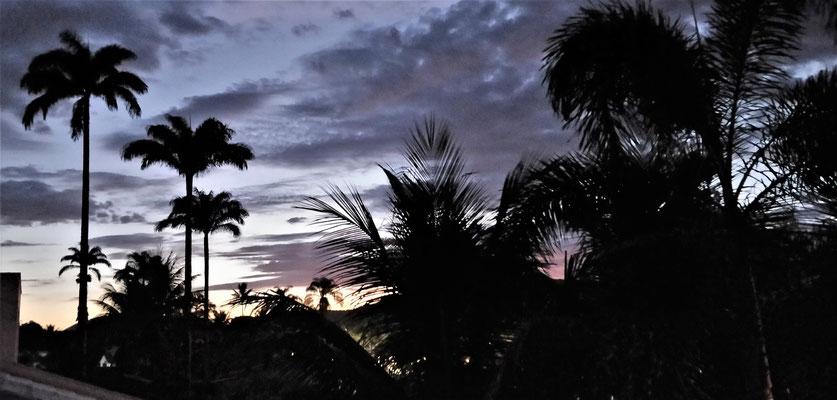 Morgenstimmung von unserer Terrasse.