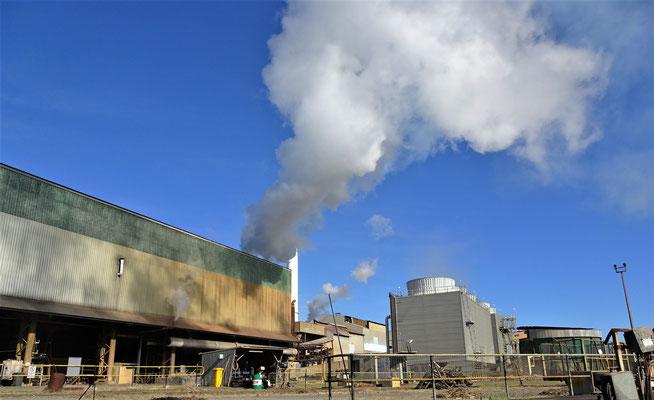 ......wollten wir diese Zuckerrohrfabrik.....