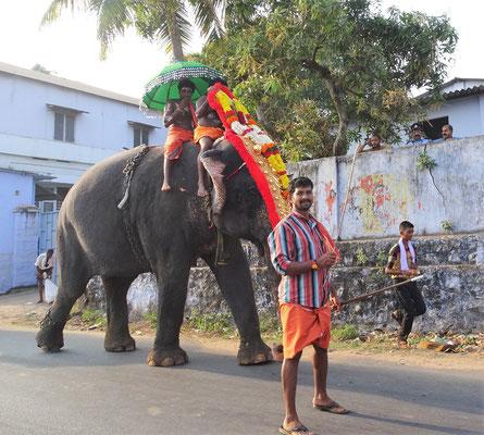 ...und den Elefanten mit...