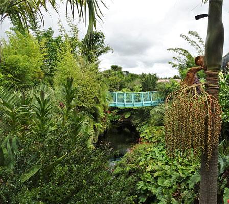 Die Brücke....