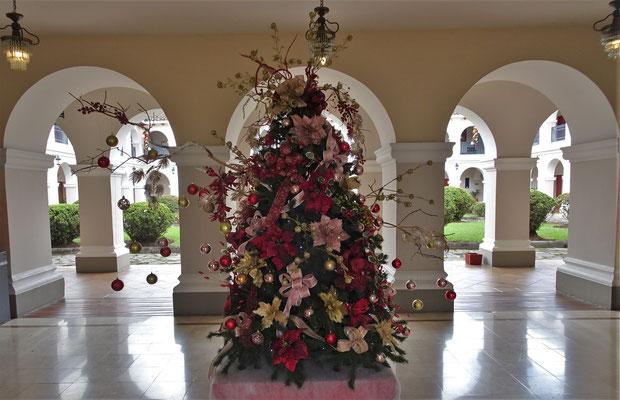 .....und dem Weihnachtsbaum.