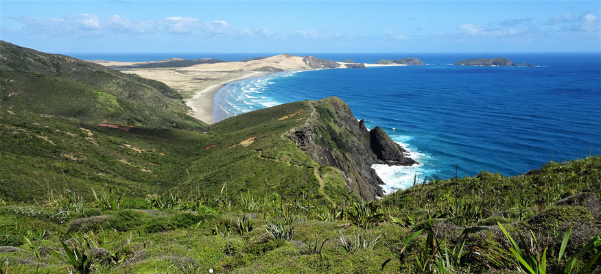 Am Cape Reinga dem....