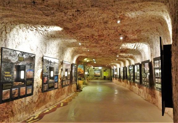 Der Eingang zum unterirdischen Museum....
