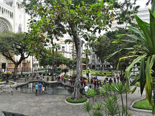 ....dem Seminario Park.