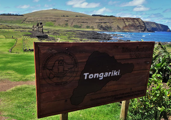 In Tongariki stehen......