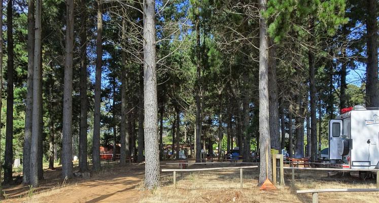 Der Campingplatz.....