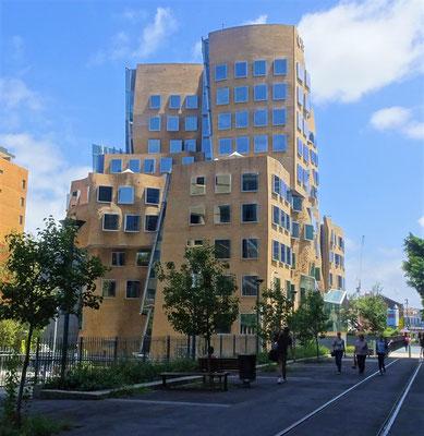 Eine ganz spezielle Architektur....