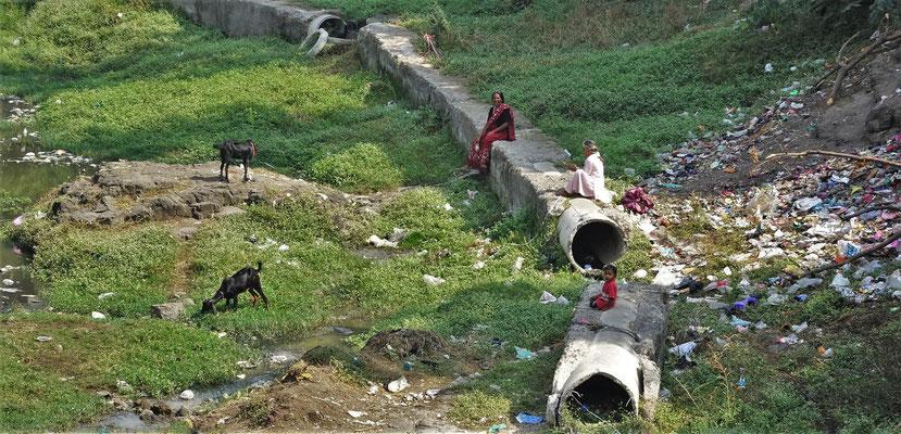 Der indische Geissenpeter :)