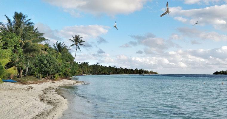 Der einsame kleine Strand.