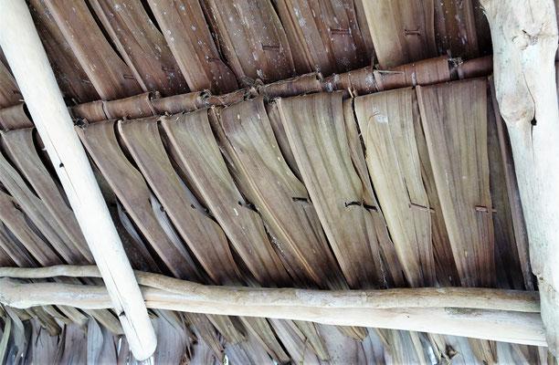 ....mit dem Blätterdach.