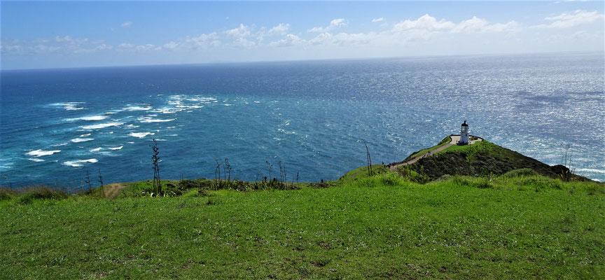 ....nördlichsten Punkt Neuseelands....