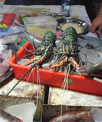 ...und der Lobster vor.....