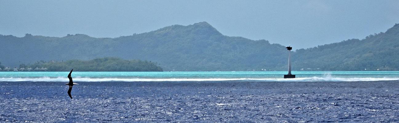 Das Riff vor Bora Bora.
