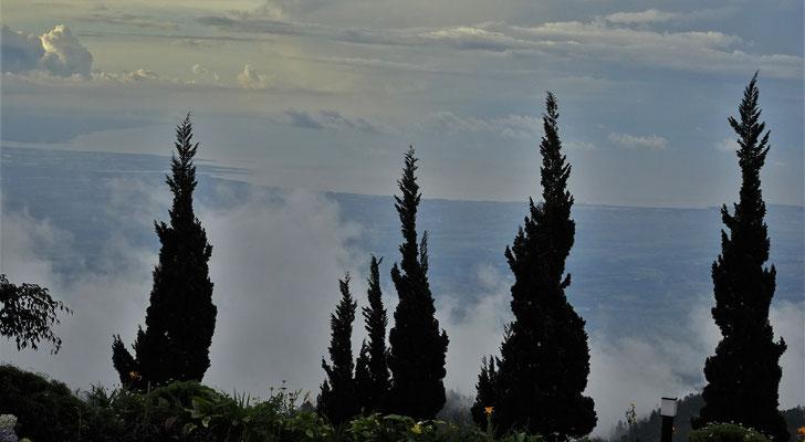 Der Nebel steigt hoch.