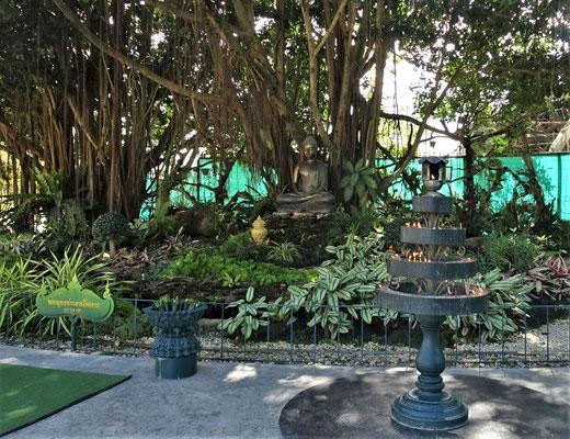 Der Buddha unter dem Bodi Baum.