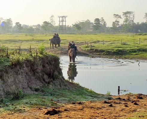 Der Elefantenritt früh morgens