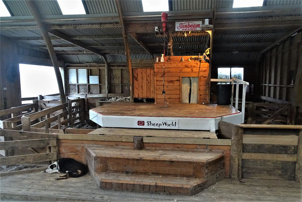 Die Scherbühne nördlich von Warkworth......