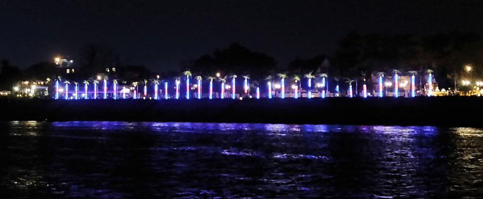 Palmen mit Lichtgirlanden.