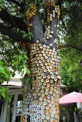 ....mit eigenwilliger Baum-....
