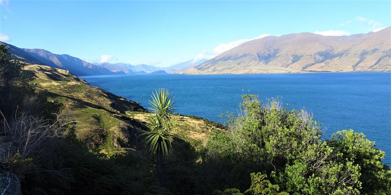 Der Wanaka See