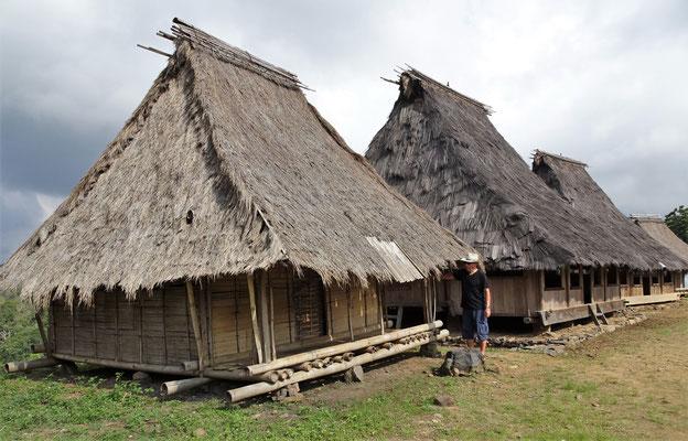 ...im traditionellen Dorf Wologai.