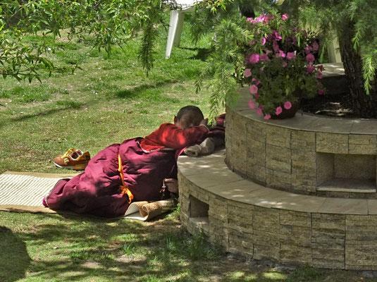Mönch beim Mittagsschlaf in unsrem Hotelgarten